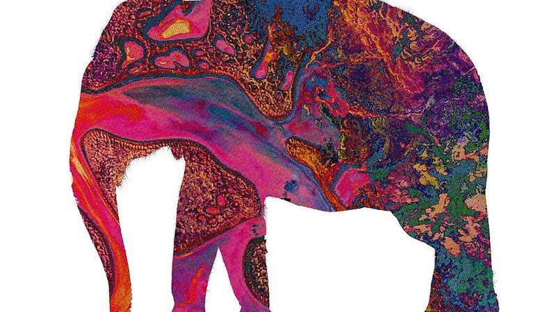 "Cancionero Rock: ""Elephant"" – Tame Impala (2012)"