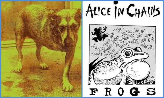 """Cancionero Rock: """"Frogs""""-Alice In Chains (1995)"""