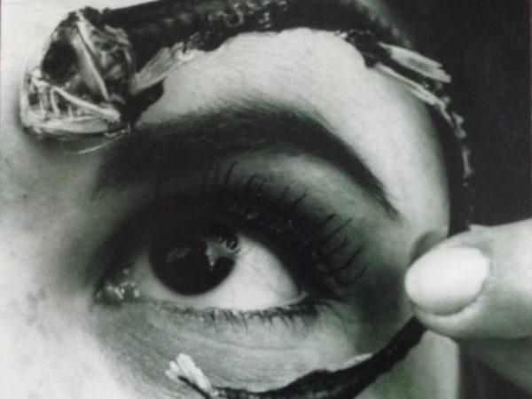 Disco Volante: historias de esquizofrenia y surrealismo por Mr. Bungle