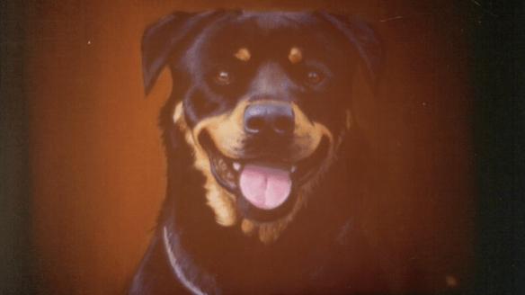 """Dog Eat Dog,"": Tomahawk libera visceral video para su nuevo single, míralo acá"